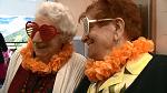 Happy papy clip minitaure