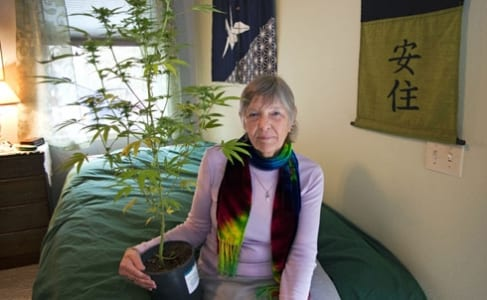 Cette photo est tirée du travail de Steve Labadessa, qui a réalisé une série de portait de personnes âgées qui consomment su cannabis.  voir :  http://www.stevelabadessa.com/