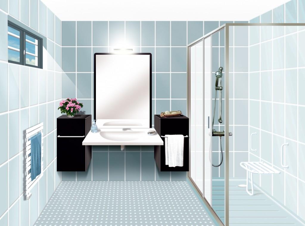 Ph nix evolution silver economie - Modifier salle de bain ...