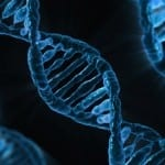 Vieillissement : un test sanguin pour déterminer son âge «réel»