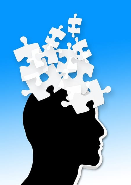 Alzheimer, déclin cognitif,
