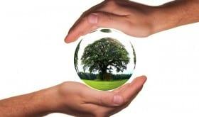 L'écologie, au cœur des préoccupations des seniors