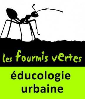Logo les fourmis vertes - éconologie - Polylogis - Silvereco
