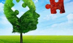 Maladie d'Alzheimer : vers un vaccin prometteur ?