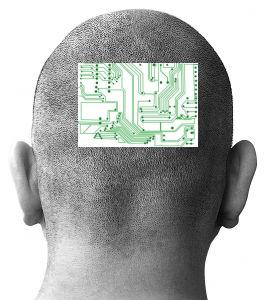Puce cérébrale ReNaChip
