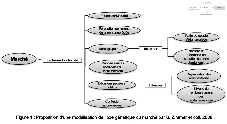 Marché des technologies dédiées aux personnes âgées Figure 4 Proposition d'une modélisation de l'axe génétique du marché