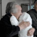 Paro : le robot thérapeutique pour les malades Alzheimer de plus en plus populaire en France