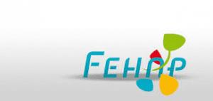 FEHAP logo
