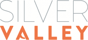 logo silver valley rect.