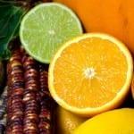 L'Observatoire économique de l'achat public publie sa nouvelle recommandation Nutrition