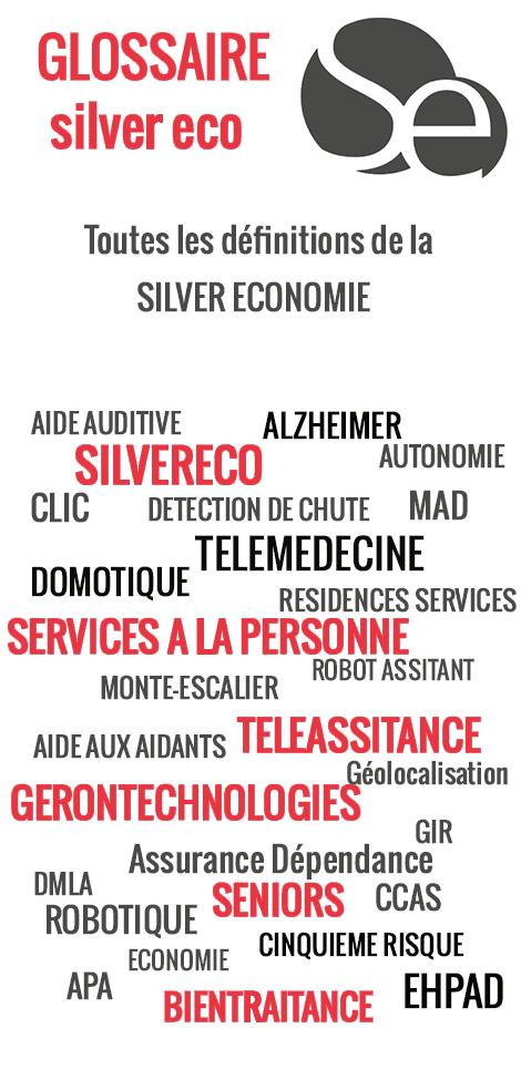 glossaire silver économie
