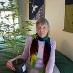 Michèle Delaunay : dépénaliser l'usage du cannabis thérapeutique chez les seniors ?