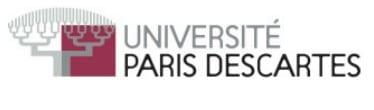 Descartes-université