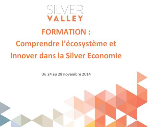 Silver Valley Formation Silver économie