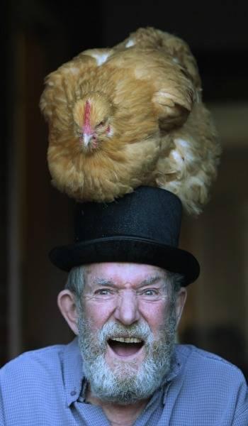 senior-man-chicken-hat