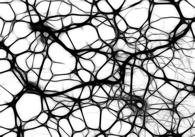 Neurone, Cerveau, Alzheimer