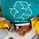 écologie - développement durable -