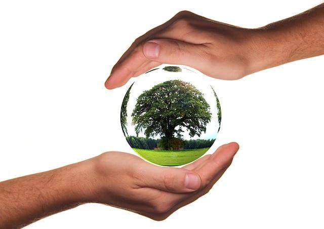 écologie - recyclage