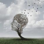 Alzheimer : le stress accélère le déclin cognitif chez les personnes âgées