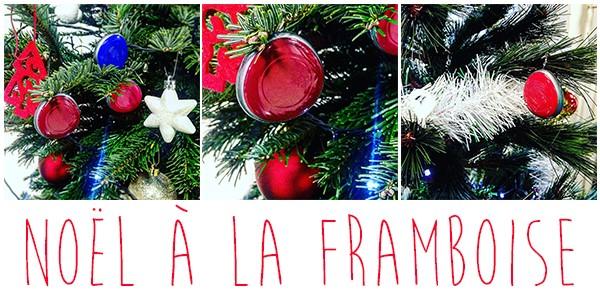 Assystel - Noël à la Framboise