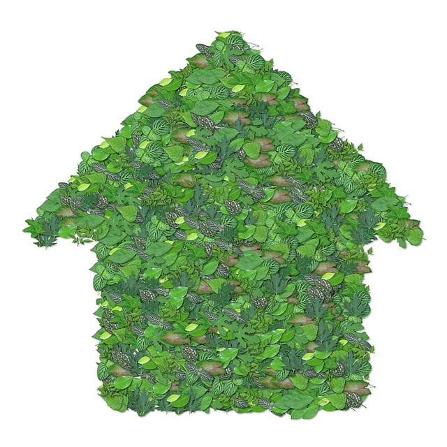 Retraite - se mettre au vert - maison- domicile - logement