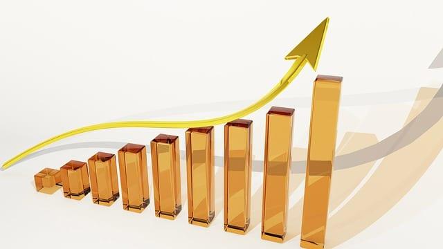 Vecteur de croissance Silver économie