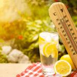 Prévention fortes chaleurs : les bons réflexes