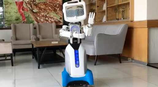 dinsow-robot-thaïlande1