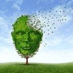 Quels dispositifs pour accompagner la maladie d'Alzheimer ?