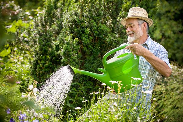 loisir-jardinage-som