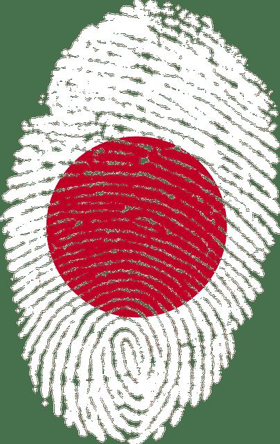 Vieillissement du Japon