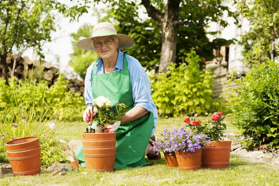 thérapie du jardinage