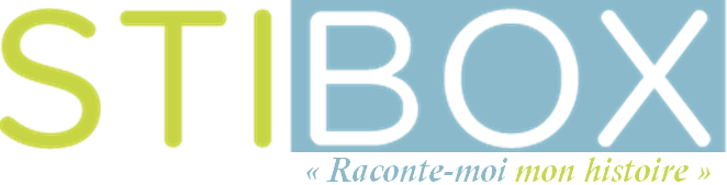 Logo Stibox