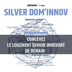 Silver Dom Innov 2017