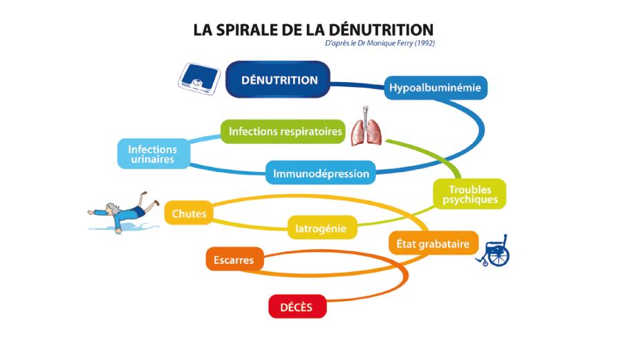 Schéma dénutrition