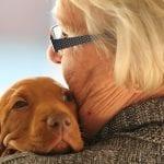 Chien - Chiot - Animal de compagnie - Animaux - Thérapie non médicamenteuse en maison de retraite