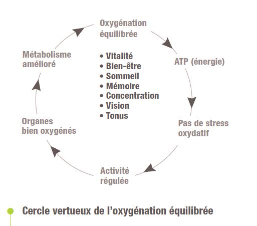 Cercle vertueux de l'oxygénation équilibrée
