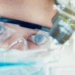 Les médicaments «sénolytiques» : un espoir pour ralentir la vieillesse ?