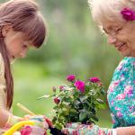 Intergénérationnel - Générations - Petits-enfants - Jardinage - Loisirs - Une