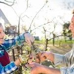 Jardinage - Loisirs - Liens intergénérationnels - Jardins