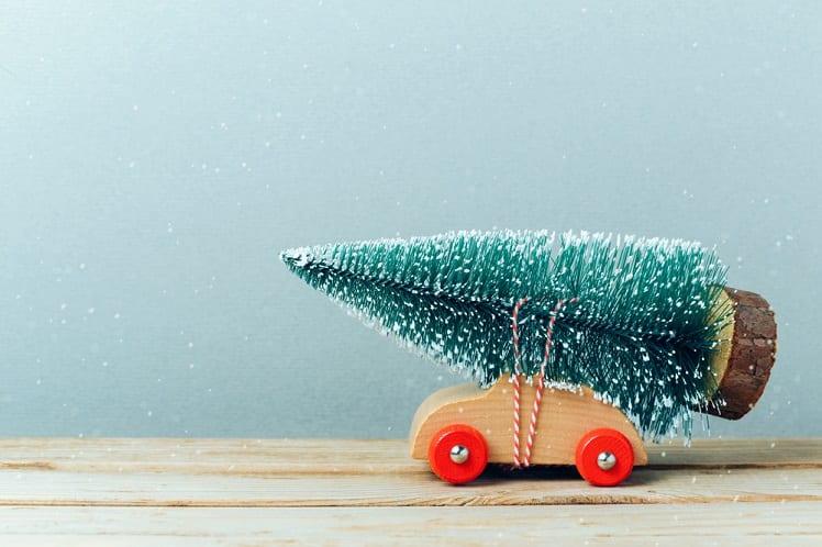 Noël - Réveillon - Sapin