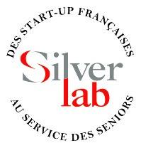 logo silver lab