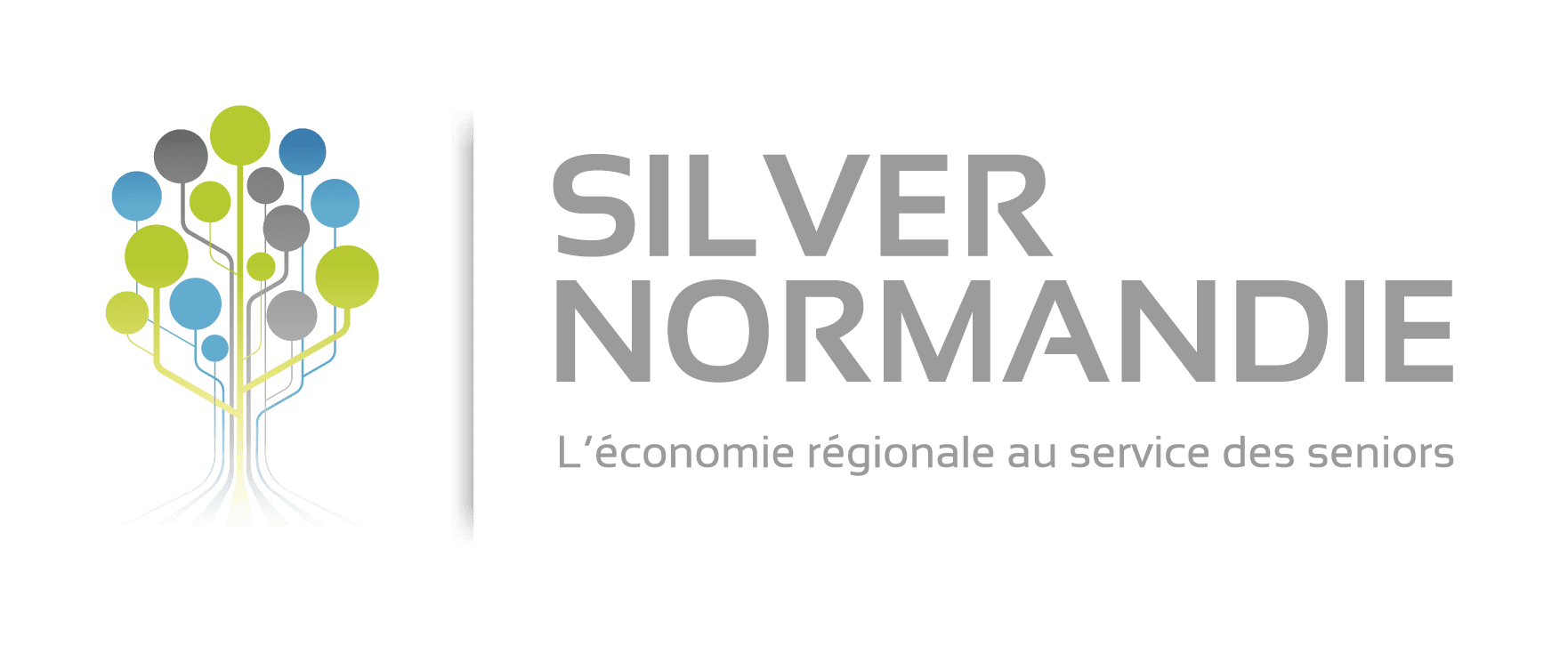 silver normandy logo