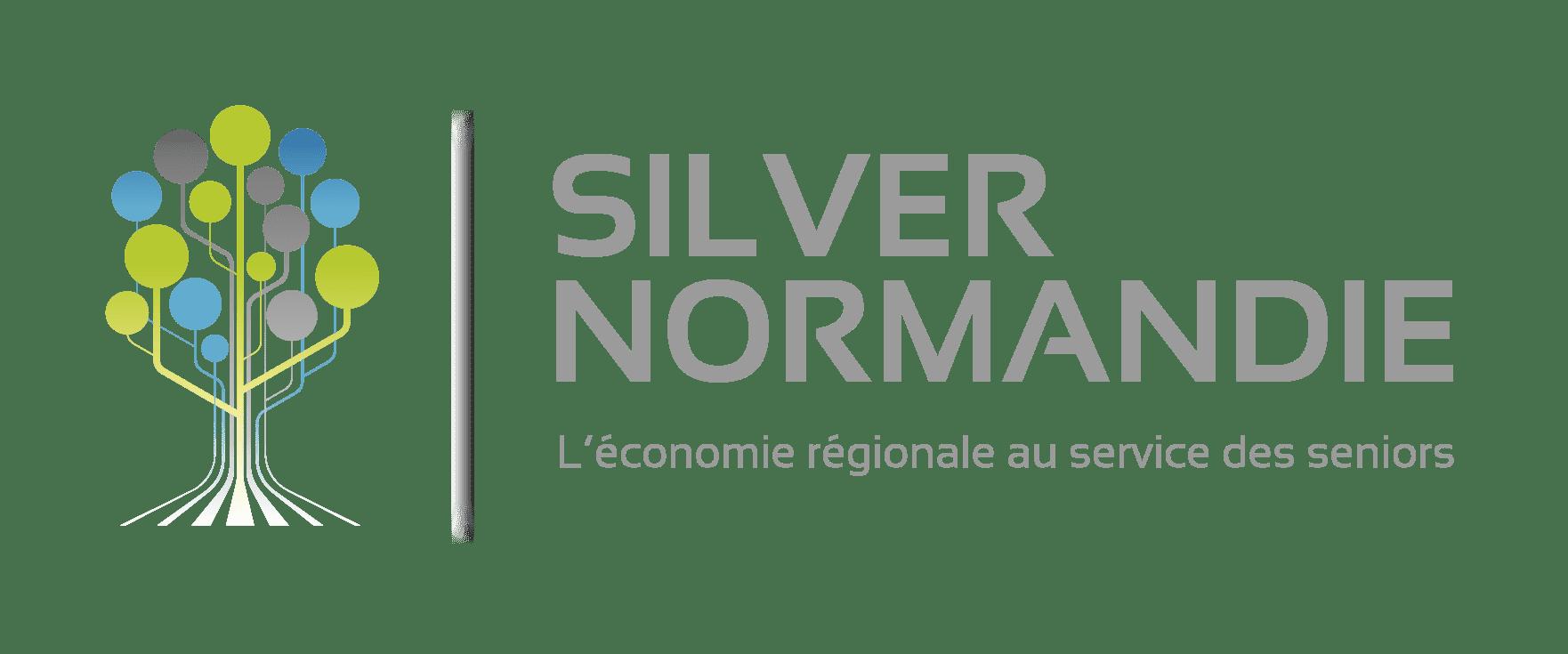 silver normandy logo