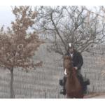 Italie : un médecin sexagénaire se déplace à cheval pour ses visites à domicile