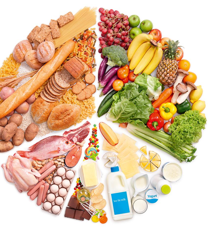 Nutrition - santé - nourriture - dénutrition