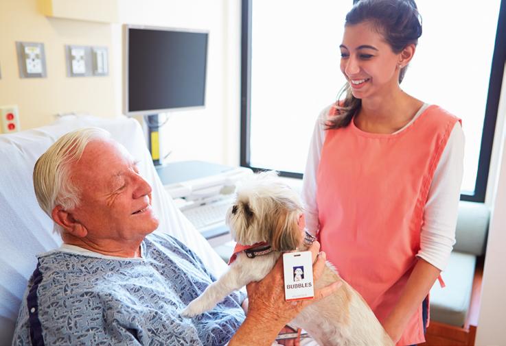 thérapie non médicamenteuse - établissement de santé - chien - senior - animal - zoothérapie