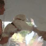 Visites en EHPAD : Une bulle gonflable pour des retrouvailles en toute sécurité