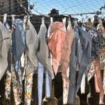 EHPAD : Une vague de solidarité à la Maison nationale des artistes de Nogent-Sur-Marne